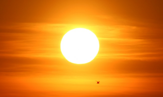 Sun-Survey-Has-Disturbing-Implications-for-America-650x388