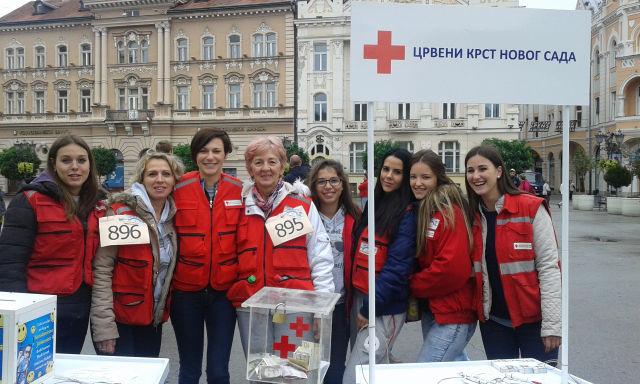 novosadski maraton2