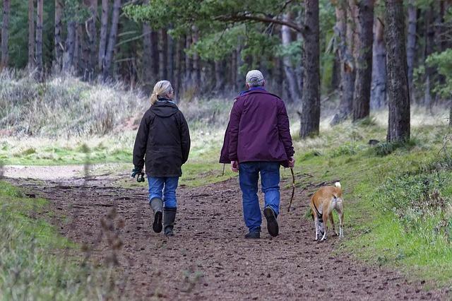 dog-walking-1070076_640