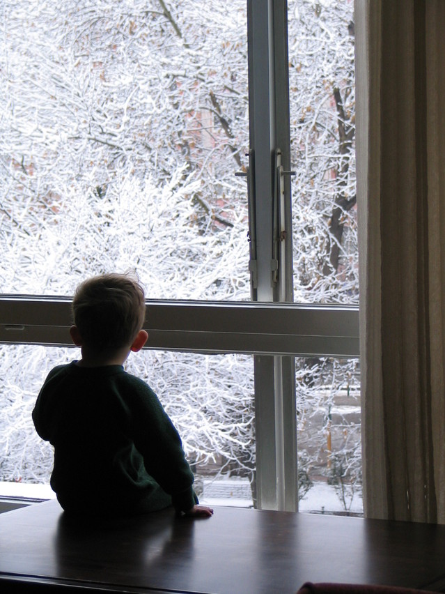 watching-the-snow-1-1522816-639x852