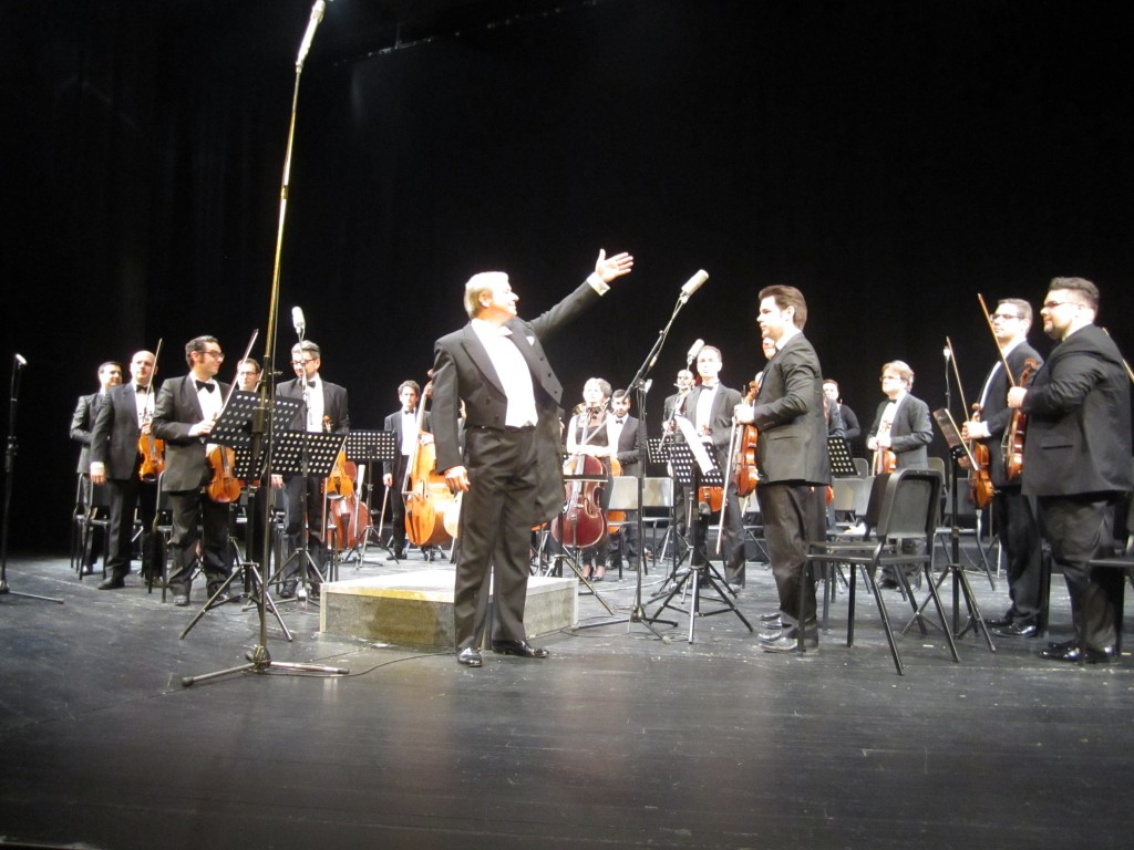 Vojvodjanski simfonicari (2)