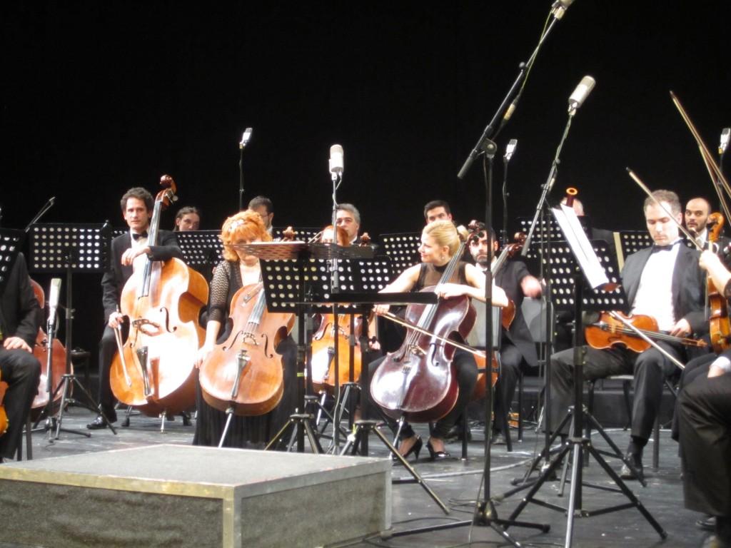 Vojvodjanski simfonicari (3)