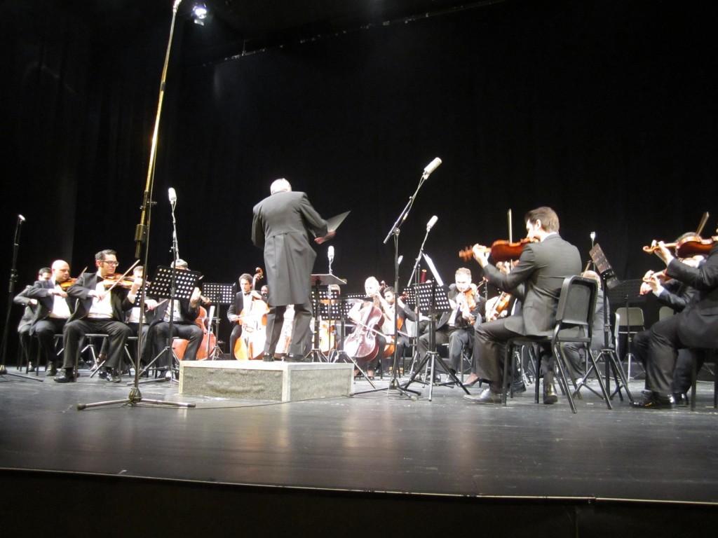 Vojvodjanski simfonicari (4)