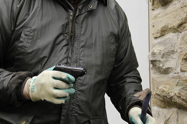 burglar-1216195_640