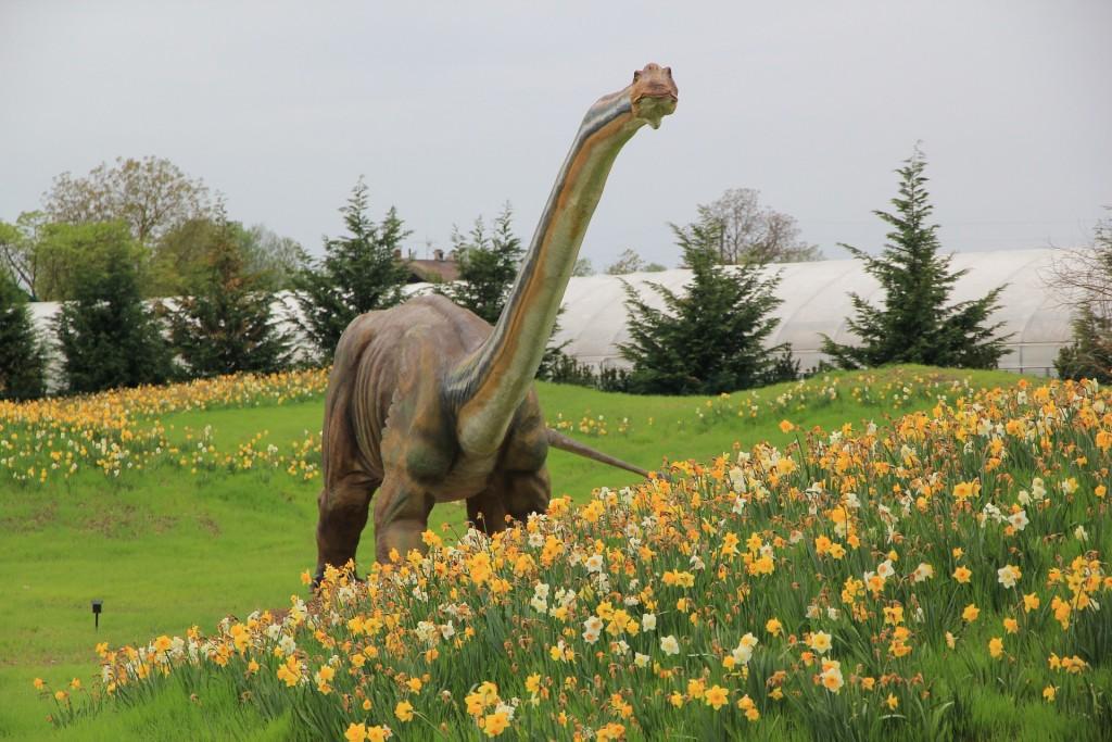 dinosaur-756130_1920