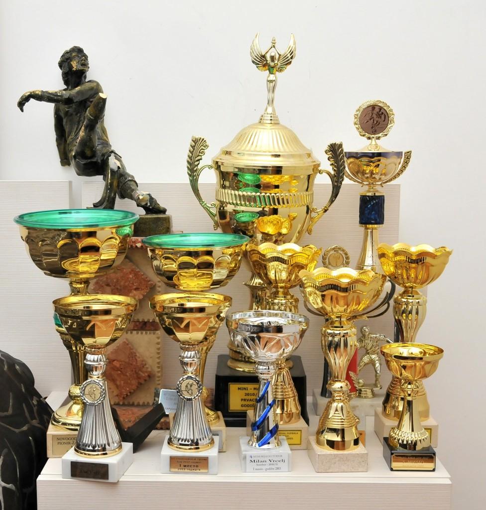 Bogata riznica trofeja osvojenih tokom profesionalne fudbalske karijere