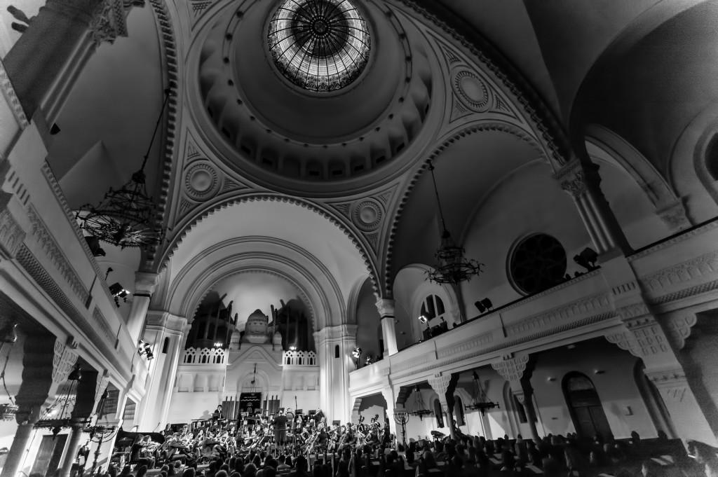 Koncert Sinagoga (7)