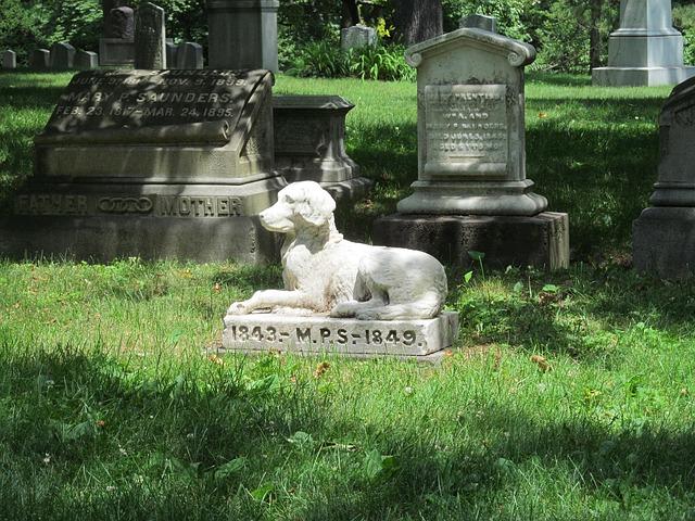 groblje za ljubimce