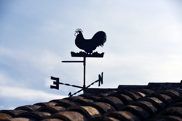 weather-vane-711082_640