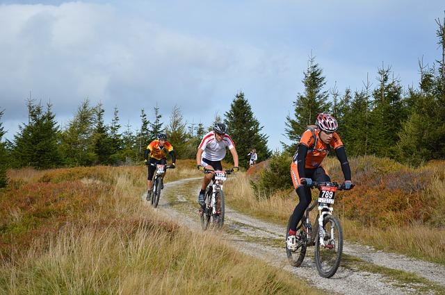 mountain-bikes-1228897_640