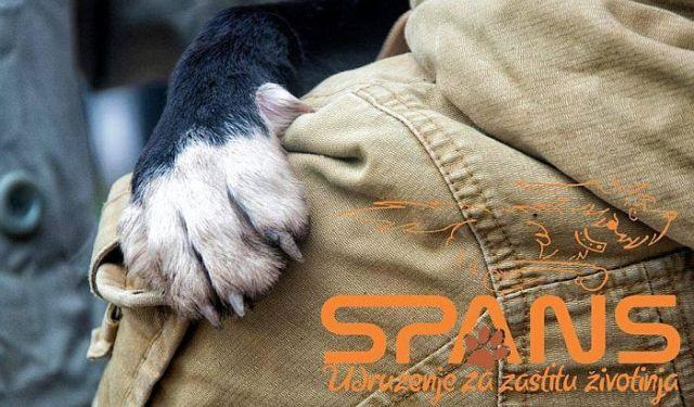 spans_slogan