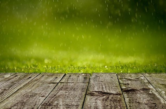 spring-316539_640