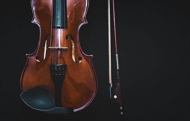 bowed-instrument-1853324_640